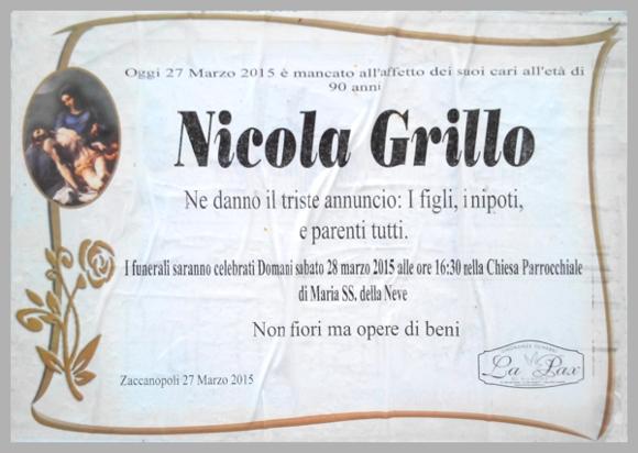 GrilloNicola20150328