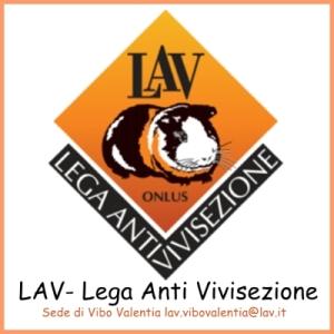 LAV-Vibo
