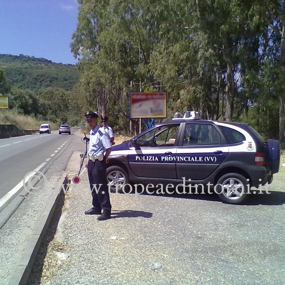 Il Corpo di Polizia Provinciale di Vibo Valentia durante un controllo - foto Grillo